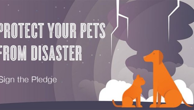 Sign ASPCA Disaster Pledge