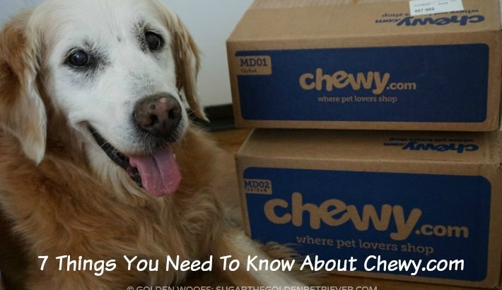 7 Things You Need To Know About Chewy.com