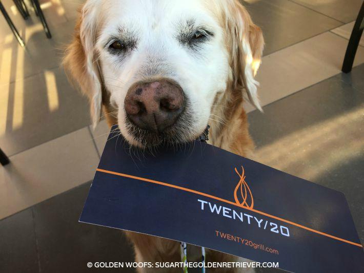 dog friendly Twenty20 Grill Sheraton Carlsbad