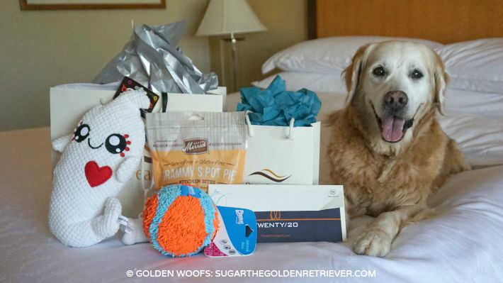 dog friendly gifts Sheraton Carlsbad