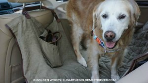 dog seat cover review