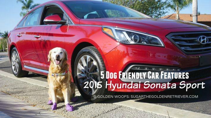 5 Dog Friendly Car Features Hyundai Sonata