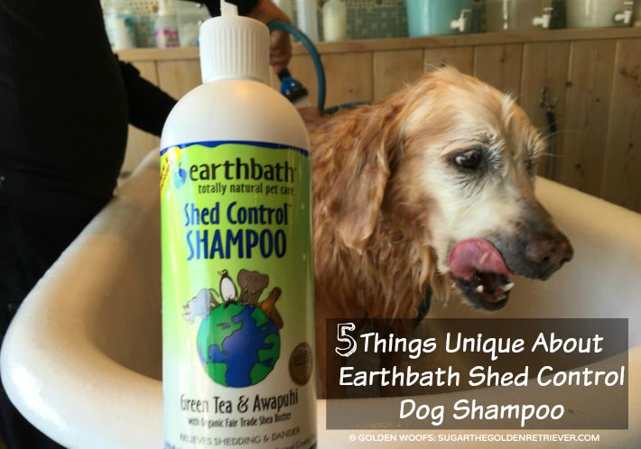 5 Things Unique About Earthbath Shed Control Dog Shampoo