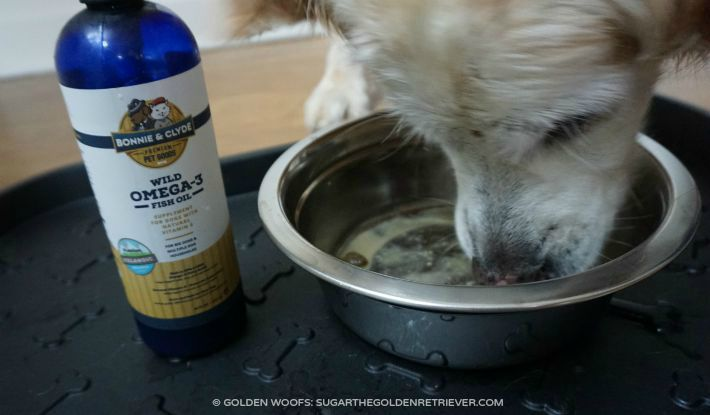Sponsored post archives page 4 of 10 golden woofs for Fish oil for dog allergies