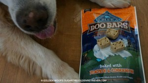 Blue BOO Bars Halloween Dog Treats Biscuits