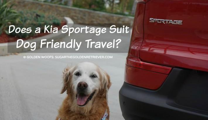Does a Kia Sportage Suit Dog Friendly Travel? #DriveKia