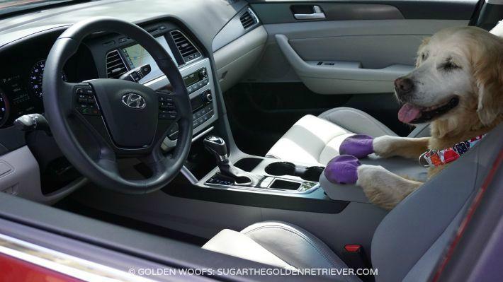 SPACIOUS Hyundai Sonata Sport