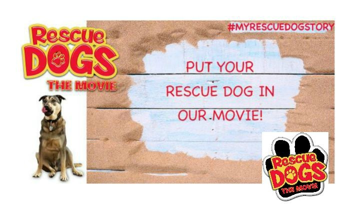Your Rescue Dog Could Be In A Movie! #MyRescueDogStory