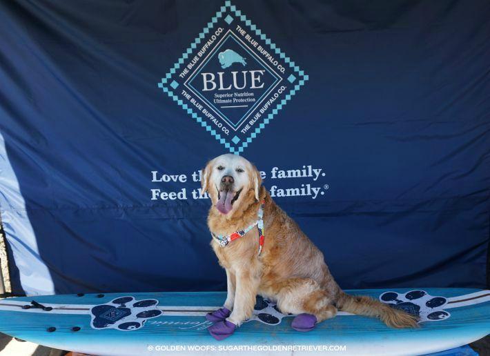 blue surf a thon hwac