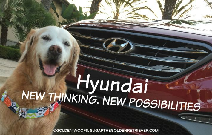 Hyundai New Thinking New Possibilities