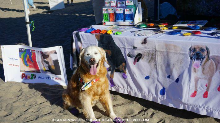 pawz dog boots hot sand