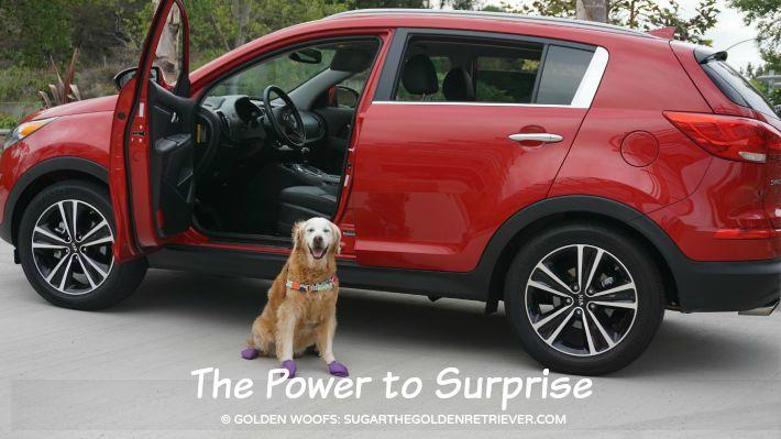 power to surprise Kia Sportage
