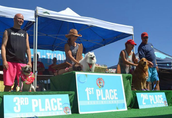 surf a thon HWAC surf dogs winners