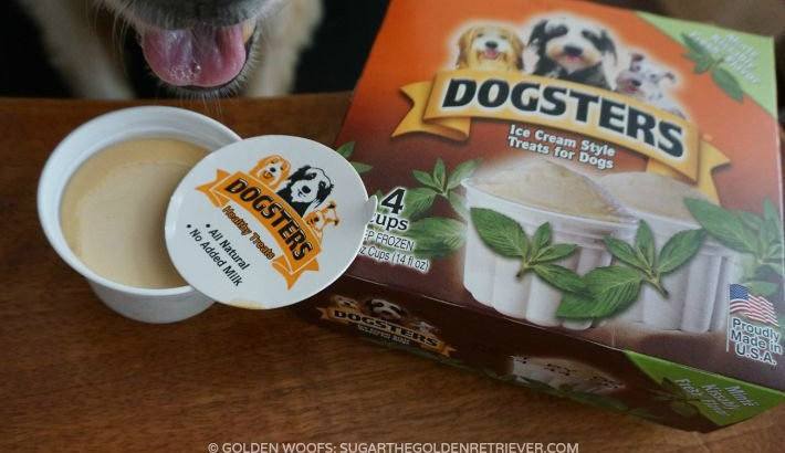 Tongue Out! Dogsters Ice Cream for Dogs