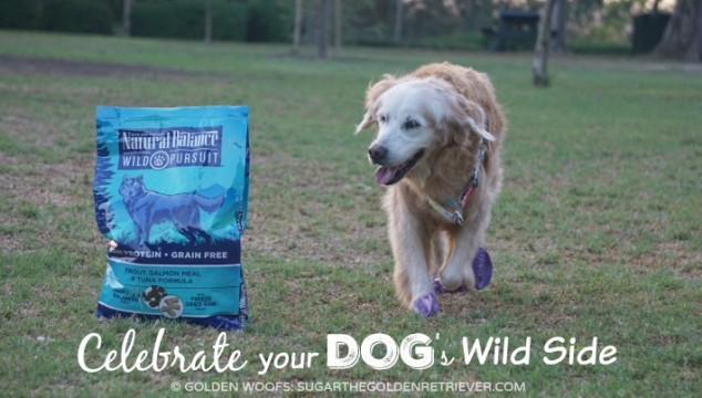 Celebrate Your Dog's Wild Side #NaturalBalance #WildPursuit