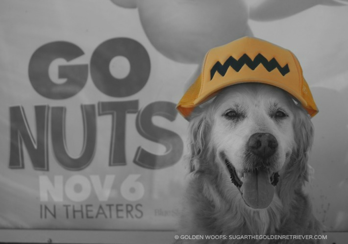 Go Nuts The Peanuts Movie