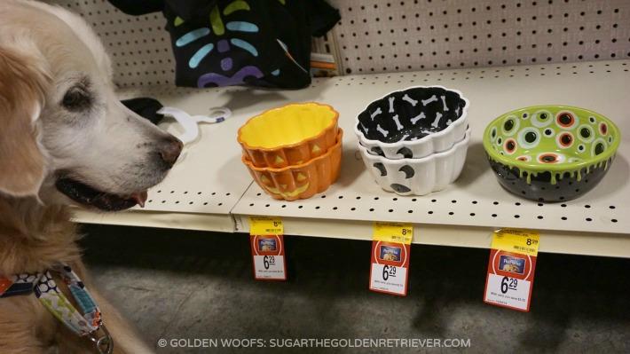 Martha Stewart Pets Halloween Collection Golden Woofs
