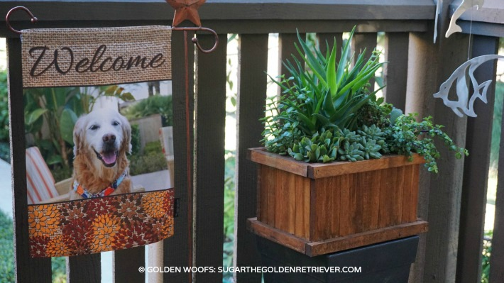 Flagology Custome Garden Pet Flag