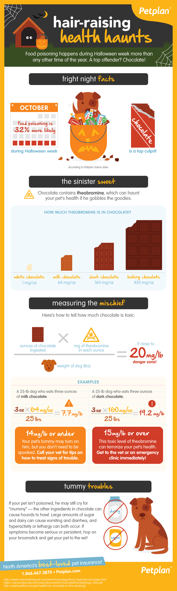 Petplan Chocolate Poisoning Halloween Infographic