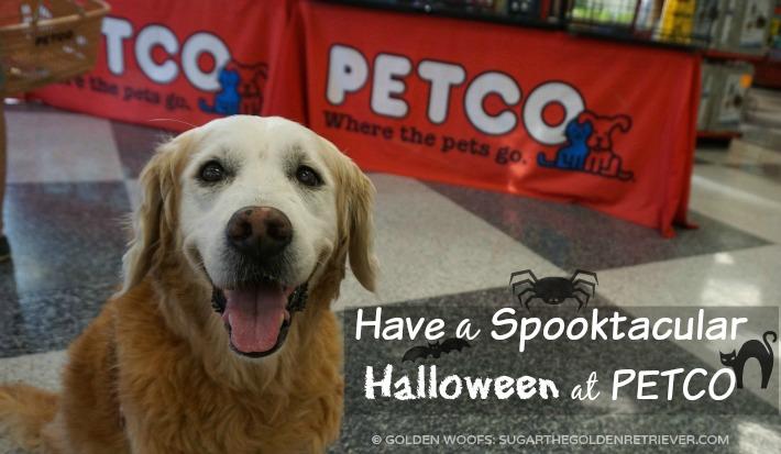 Spooktacular Halloween at Petco