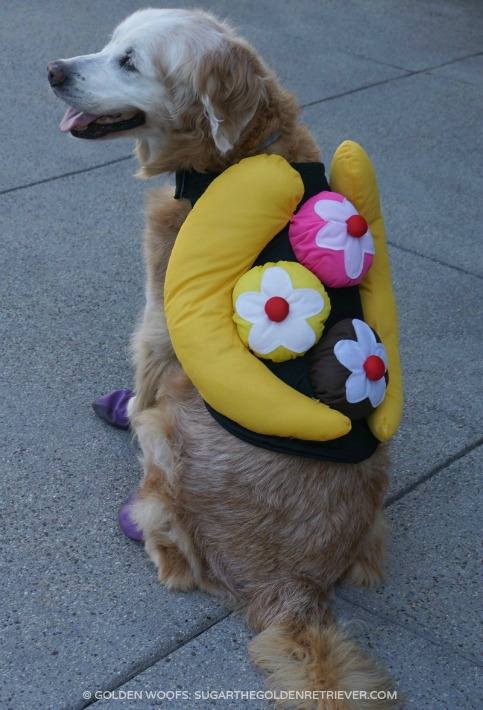 banana split halloween costume