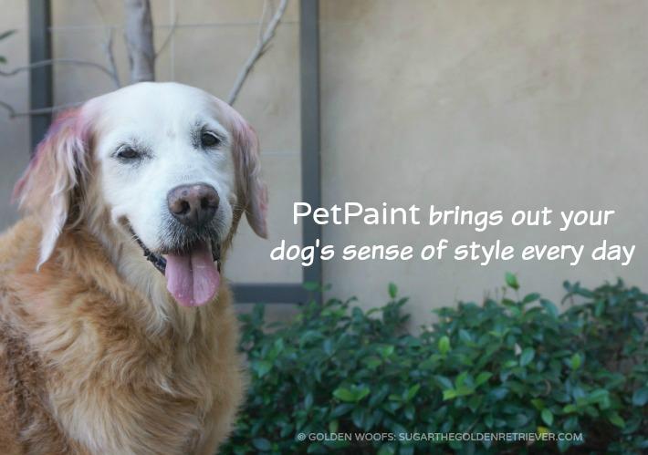 dog hairspray chalking