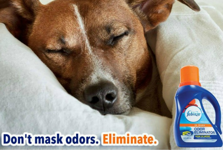 Wash And Eliminate Pet Odor With Febreze In Wash Golden