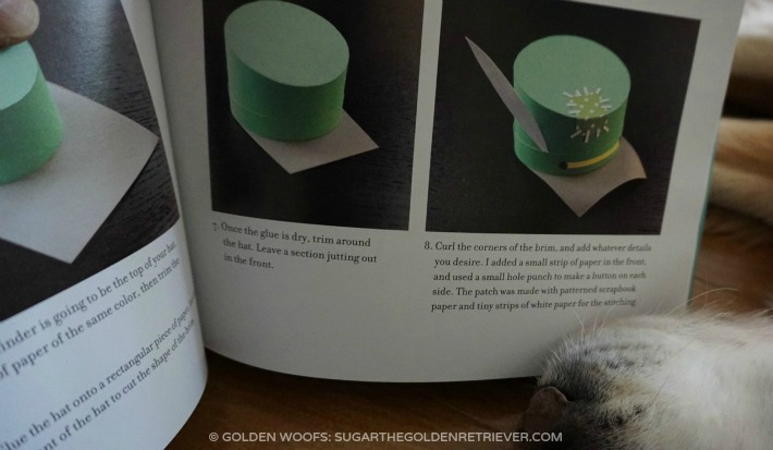 step-by-step instructions hats on cats