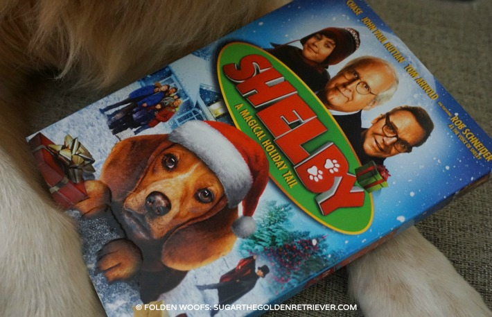 DVD SHELBY Magical Holiday Tail