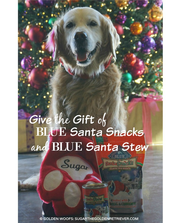 Holiday Gift Stocking Stuffers for Dogs