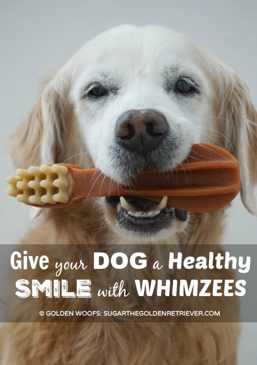 Healthy Smile with WHIMZEES