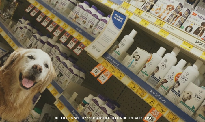 Bayer Expert Care Ear Care For Cats