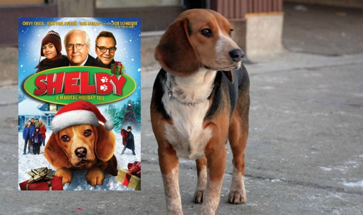 Shelby Magical Tail Movie Beagle Dog