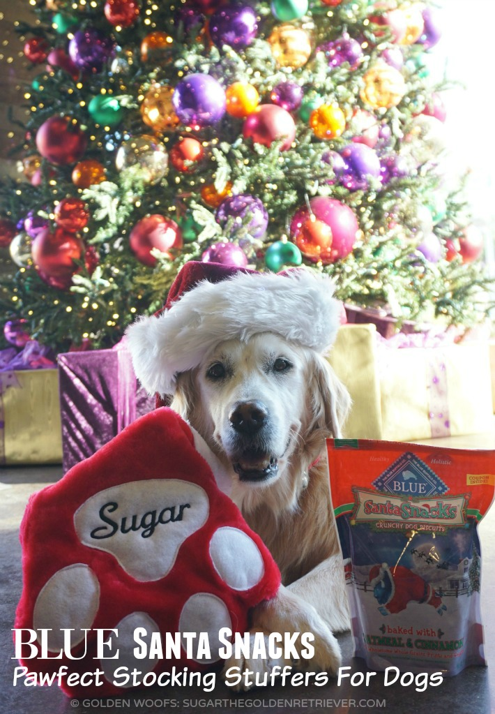 Dog Treats Stocking Stuffers For Dogs