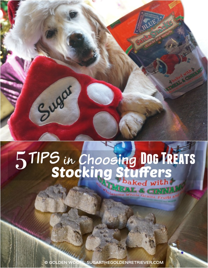 TIPS Stocking Stuffers for Dogs
