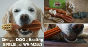 WHIMZEES Healthy SMILE