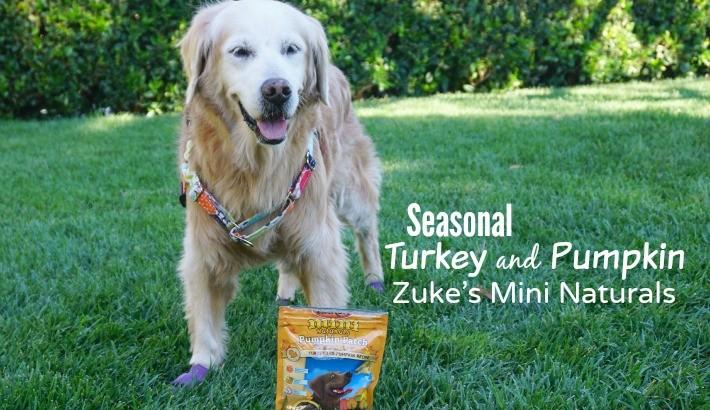 Seasonal Turkey and Pumpkin Zuke's Mini Naturals
