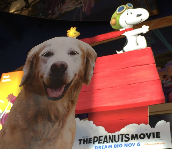 dream big Peanuts Movie