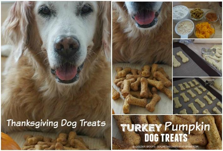Golden Retriever Homemade Dog Food