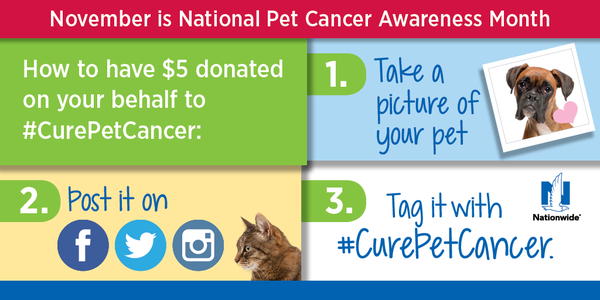 #CurePetCancer Nationwide