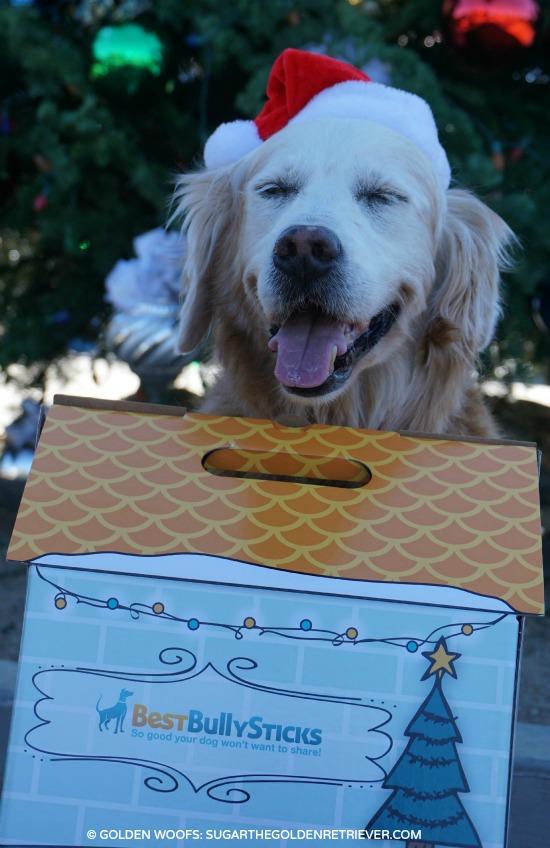 your dog deserves a best bully sticks holiday gift box golden woofs. Black Bedroom Furniture Sets. Home Design Ideas