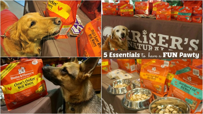 5 Essentials To Have A Fun Pawty #StellaChewyPawty #KickStartYourKibble