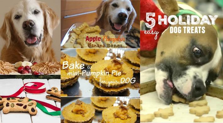 5 Easy Holiday Dog Treats