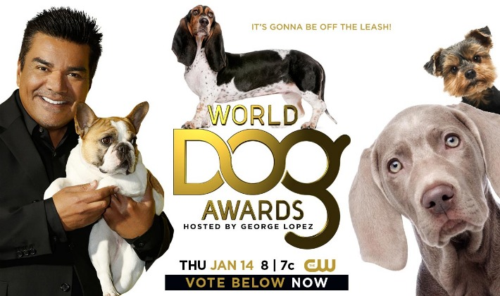 The CW WORLD DOG AWARDS Voting Now Open