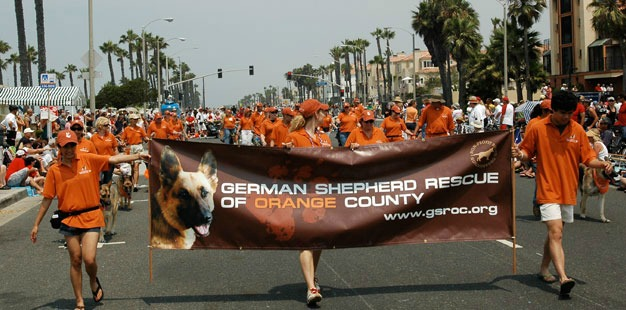 German Shepherd Rescue Orange County