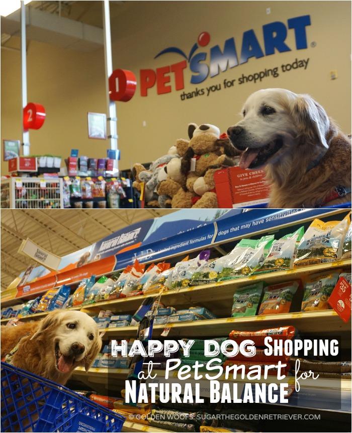 happy dog shopping at PetSmart Natural Balance
