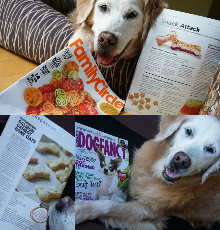 Magazine Dog Treat Recipe Featured