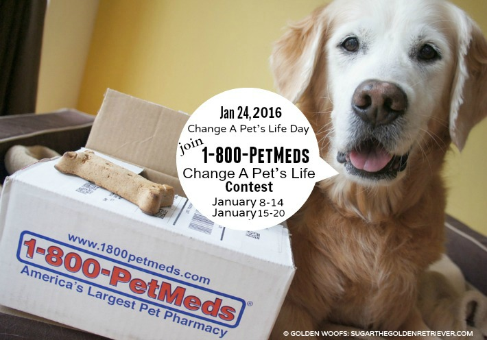 1-800-PetMeds Change A Pet's Life 2016 Contest
