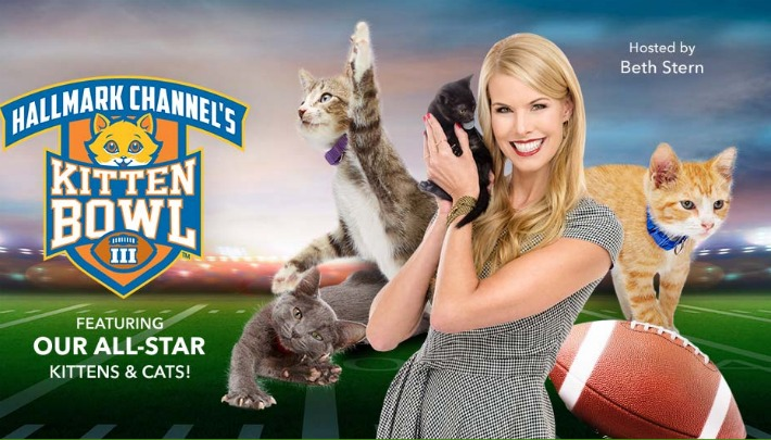 Feline Football Kitten Bowl