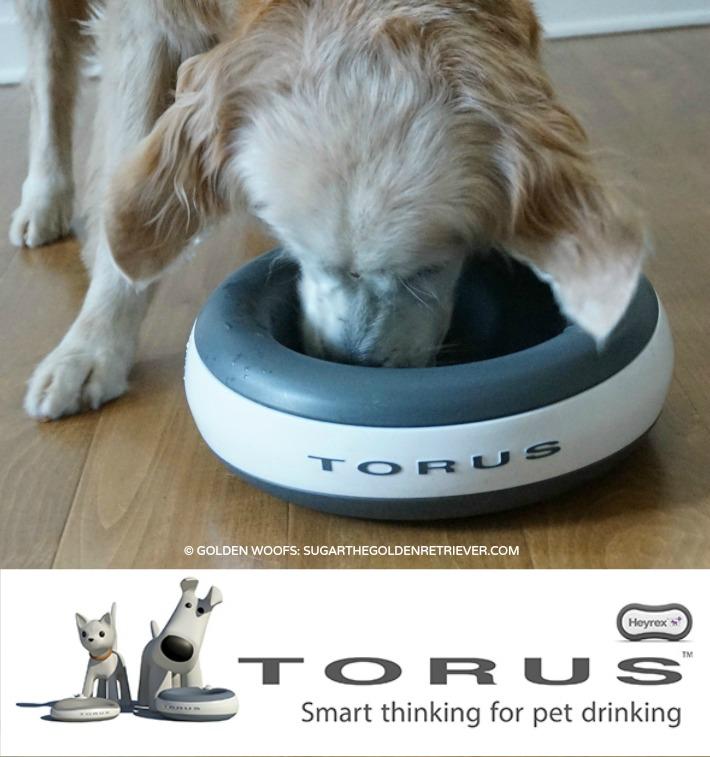 Water Pet Bowl TORUS